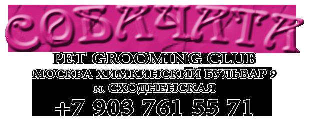 лого+бел1