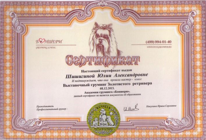 Диплом Ретриверы Юля1 (Small)