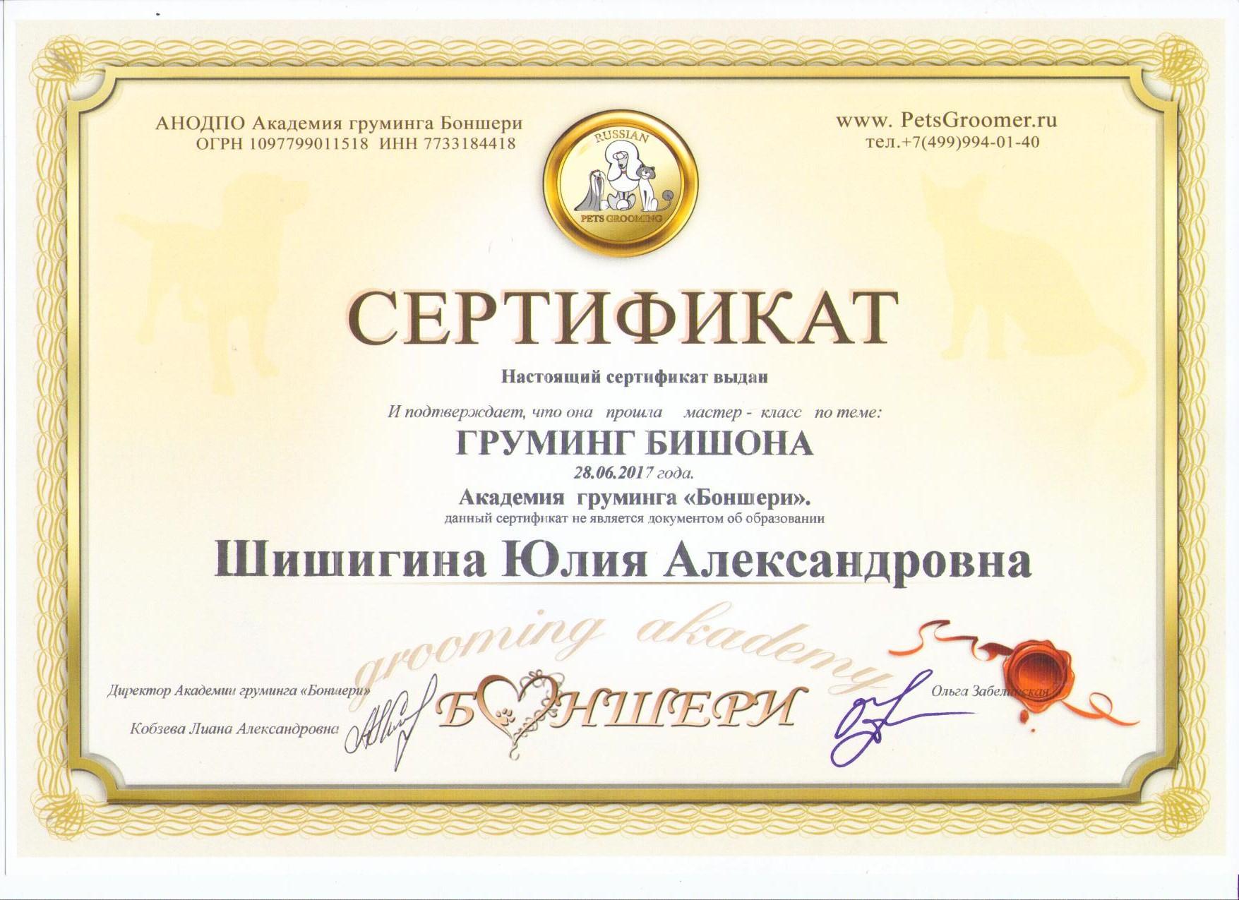 Шишигина Юлия бишон